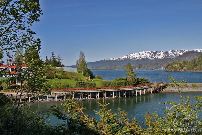View along the path of Halibut Cove, Alaska