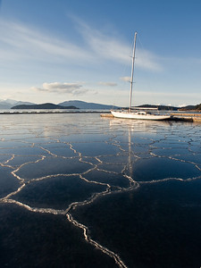 Several nights of below zero temperatures and no snow created this unusual effect at Stattor Harbor in Auke bay. Likely the stillness of the water and perhaps more fresh run-off helped create the ice. January 22, 2009.
