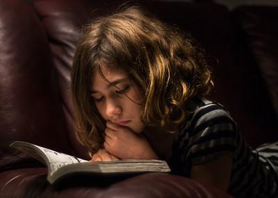 The Manga Reader