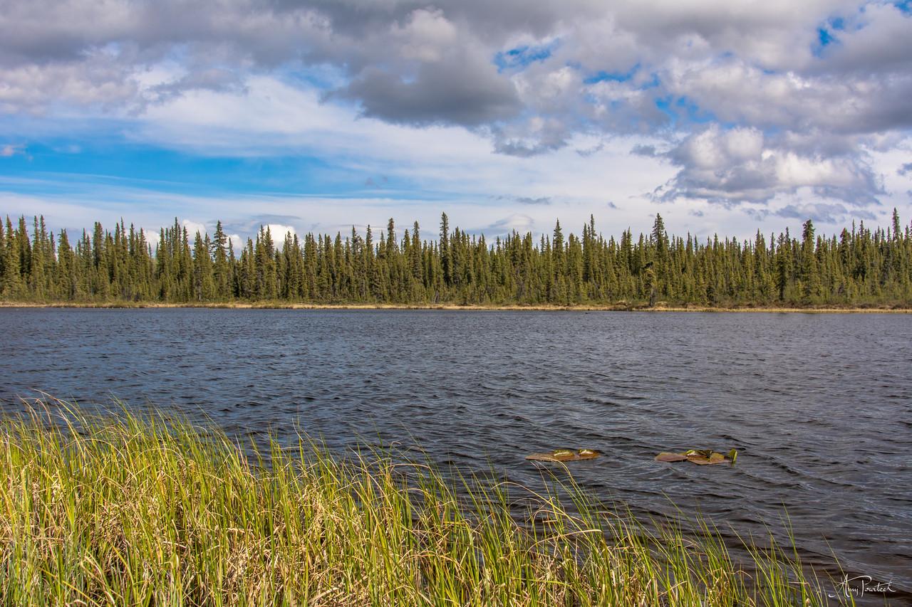 Some lake @ Glennallen