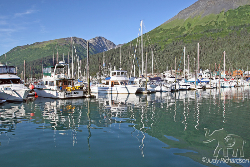 Reflections of Seward boat harbor in early morning light