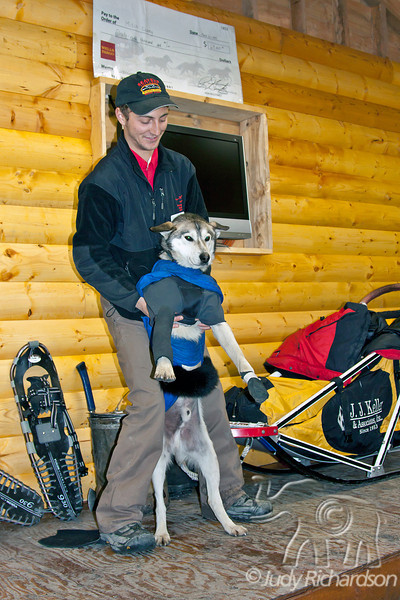 Dog Mushing demonstration showing how dogs are outfitted for the Iditarod at Seavey's in Seward, Alaska.