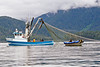 Boat bringing up the nets with the small boat assisting in Sitka, Alaska