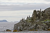Rocks with Cormorants sitting