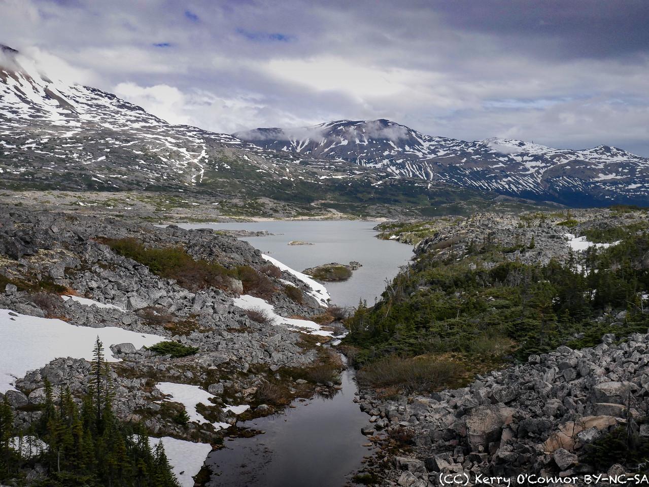 Tundra Drama
