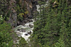 Glacial waterfall cascading down through the lush forest along Klondike Highway.