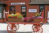 Colorful flowers on wagon in Carcross, Yukon Territory, Canada