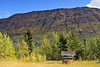 Colorful fall hillside with wishing well along the Klondike Highway
