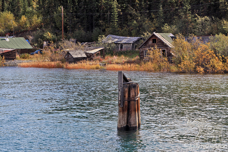 Rustic houses across northern shores of Bennett Lake where the Natasaheenie River enters