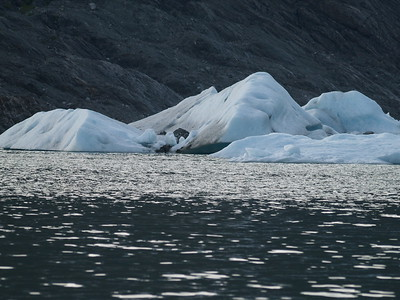 Calving ice bergs from Mendenhall Glacier
