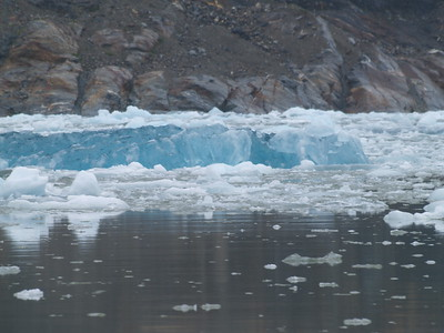 Icebergs near South Sawyer Glacier