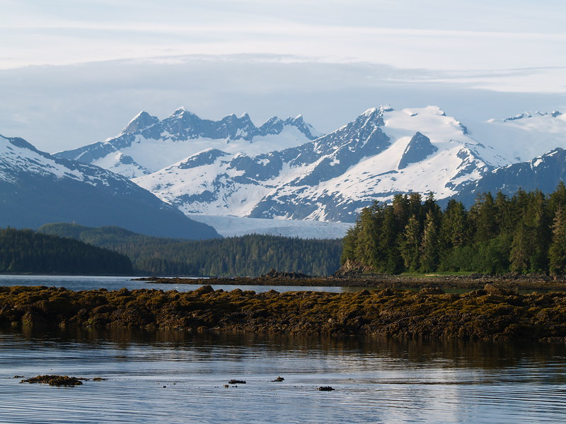 Mendenhall Glacier from False Outer Point Trail