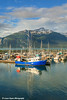 Boats docked at the Haines Small Boat Harbor, Southeast Alaska.<br /> <br /> July 02, 2014