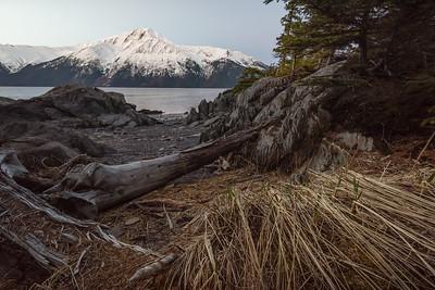 Alaskan Beach