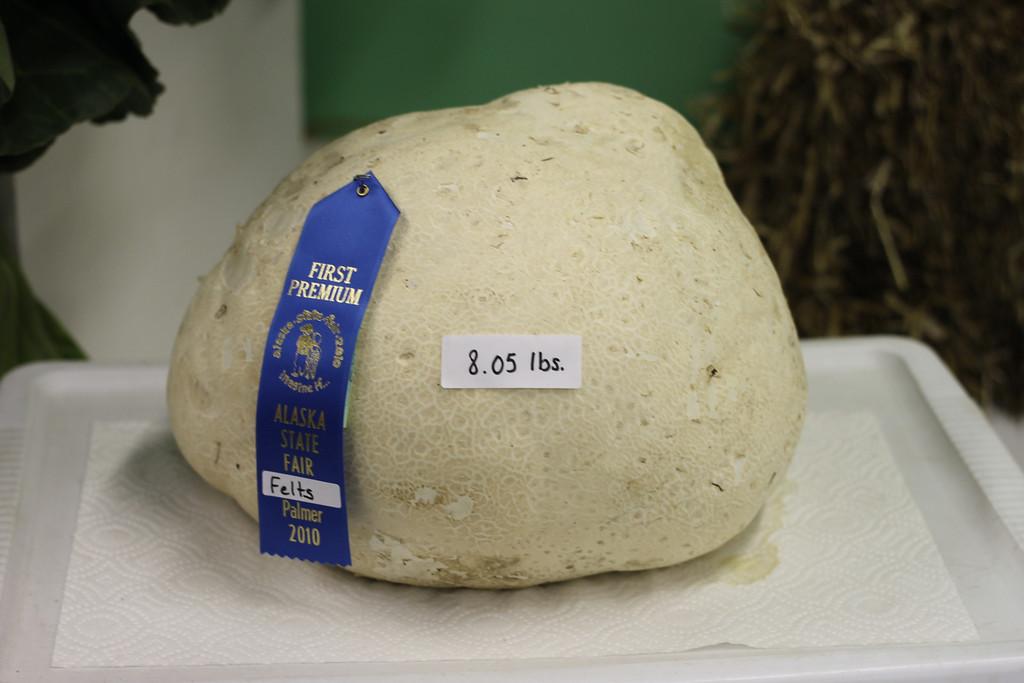 8.05 lb mushroom