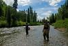 Talachulitna Creek.