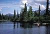 AK-1984-s013a Talachulitna River