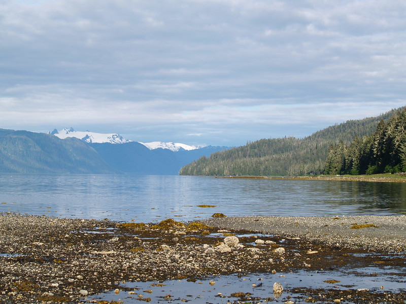 Sandy Beach and the Wrangell Narrows, Petersburg, Alaska (2006)