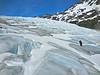 AK-2016-1383a Exit Glacier