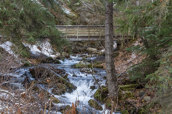 Turnigan Arm Trail Hike and Thunderbird Falls