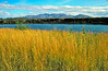 AKS00-218a Unalakleet River