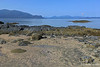 Petroglyph Beach SP-Wrangell IP 18x12_7856