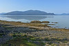 Wrangell Petroglyph beach View IP 18x12_7848