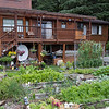 Alaska Vegetable Garden