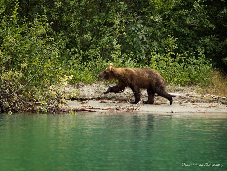 Crescent Lake, Alaska