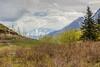 Chugach Mountains, seen from The Butte, Palmer, Alaska