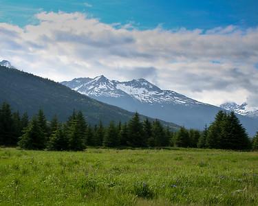 Alaska 1 338
