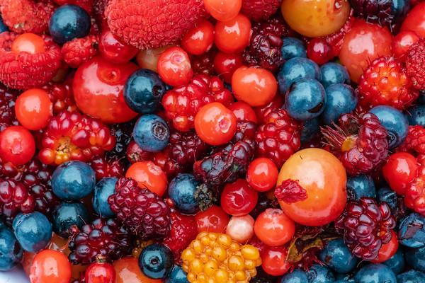 Jumble of Alaska Berries