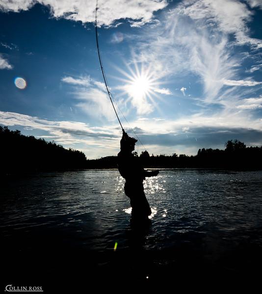 """the infamous """"trout set""""............."""