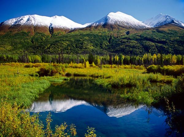 Mountains surrounding a meadow near the Copper River in Alaska.