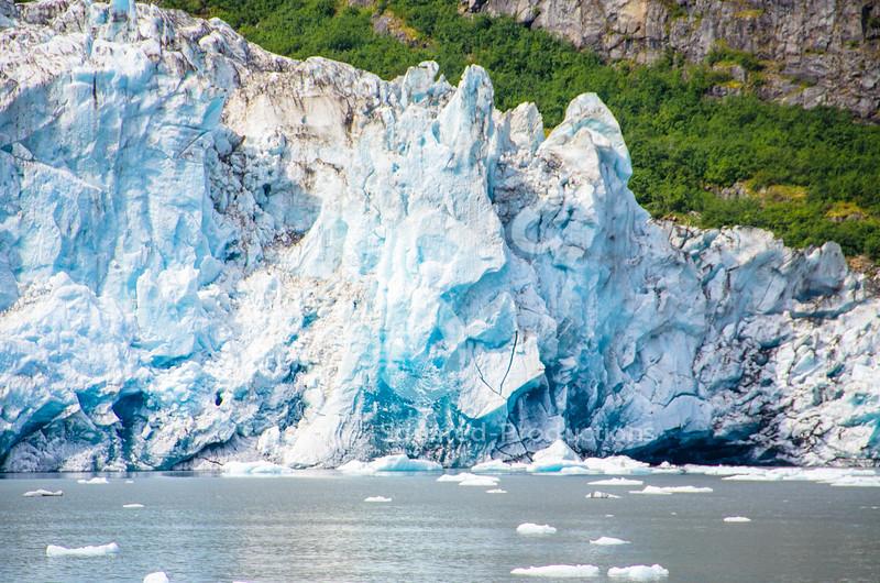 Surprise Blue Ice