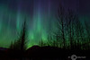 Northern Lights - Wasilla, Alaska - Sheldon Farwell - March 2007