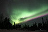 Northern Lights - Alaska & Northern Lights Tour - Martha Farwell March 2007