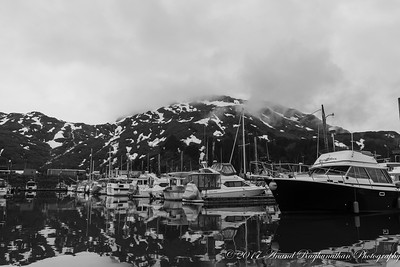 Prince William Sound Marina