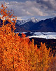 Glacial Leaves & Matanuska Glacier - Alaska Fall Tour - John Remy - October 2009
