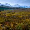 Tundra, first snow