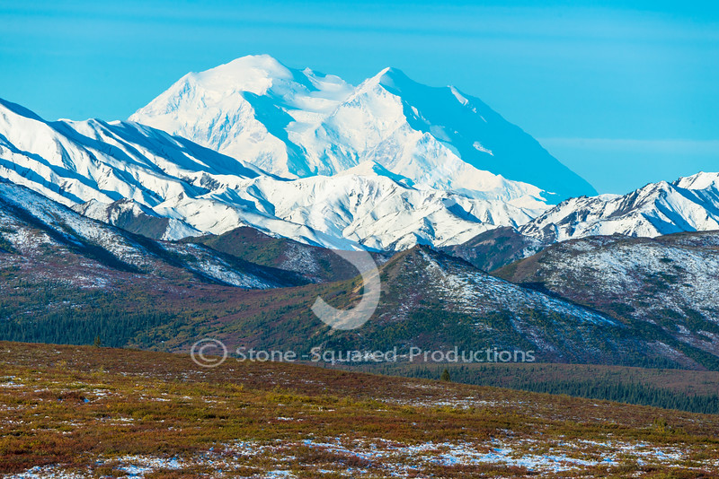 Fall Colors Denali