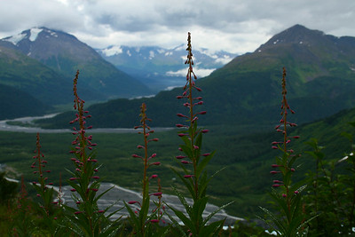 Alaska (2007)