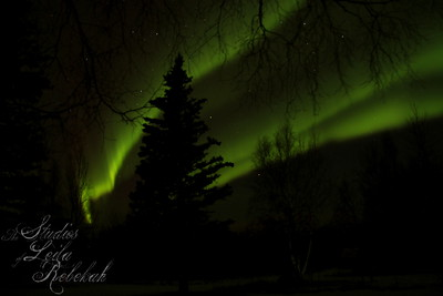 Week 12-Green/Aurora B