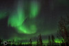 Northen Lights - Fairbanks, Alaska - Sheldon Farwell - March 2007