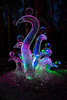 """Octopus Garden"" - World Ice Art Championship - Alaska and Northern Lights - Mark Gromko - March 2013"