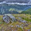 Mount Roberts Area #2