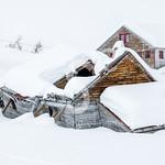 Burdens of Snow