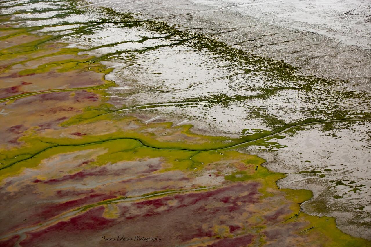 Alaska, Low Tide