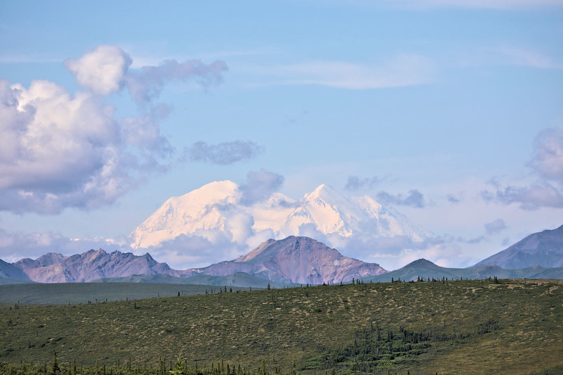 Mt Denali (in the distance)