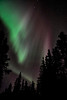 Aurora Overhead - Alaska and Northern Lights - Mark Gromko - March 2013